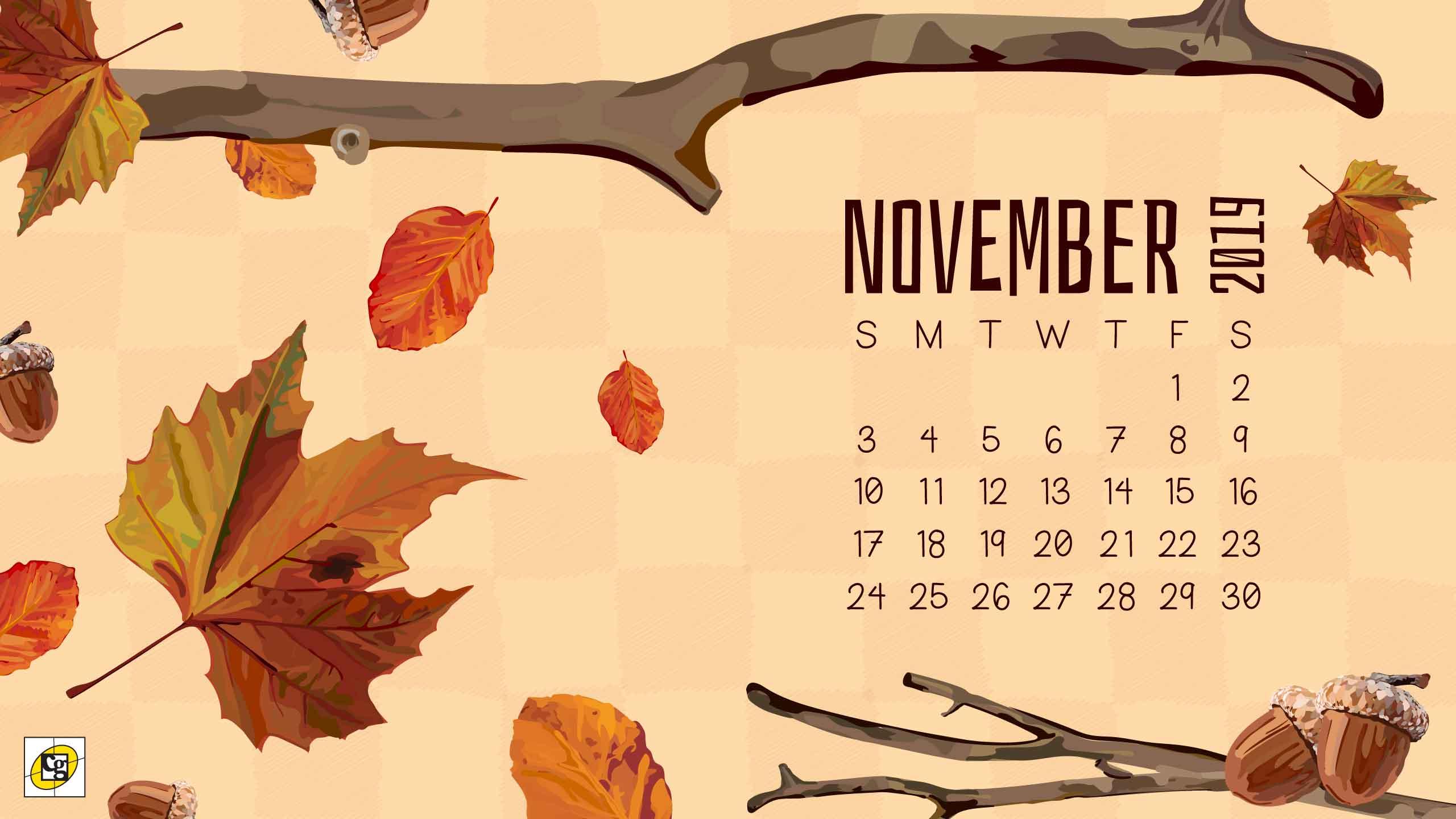 11 November2019